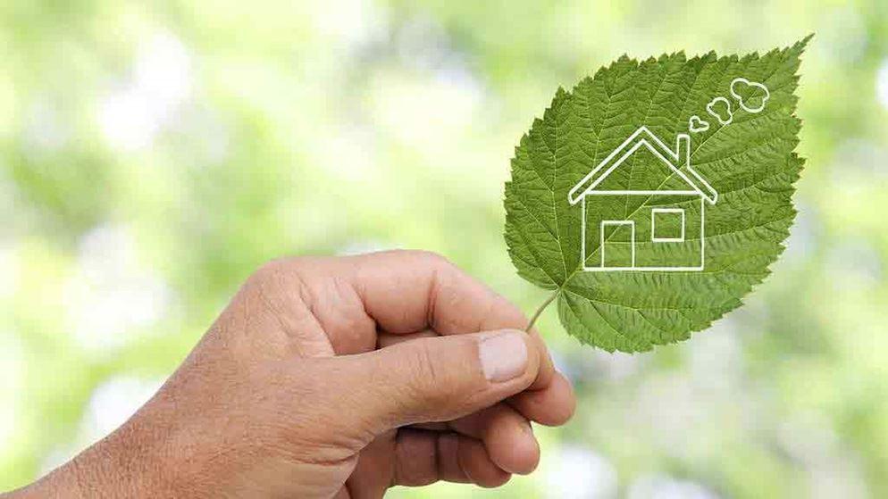 green leaf house