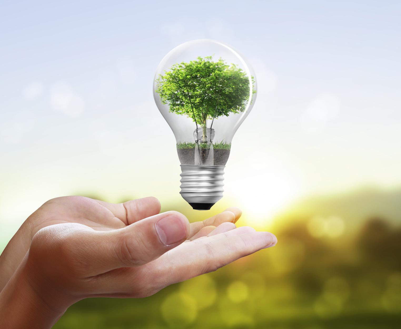 Residential no-charge energy savings program ineffective